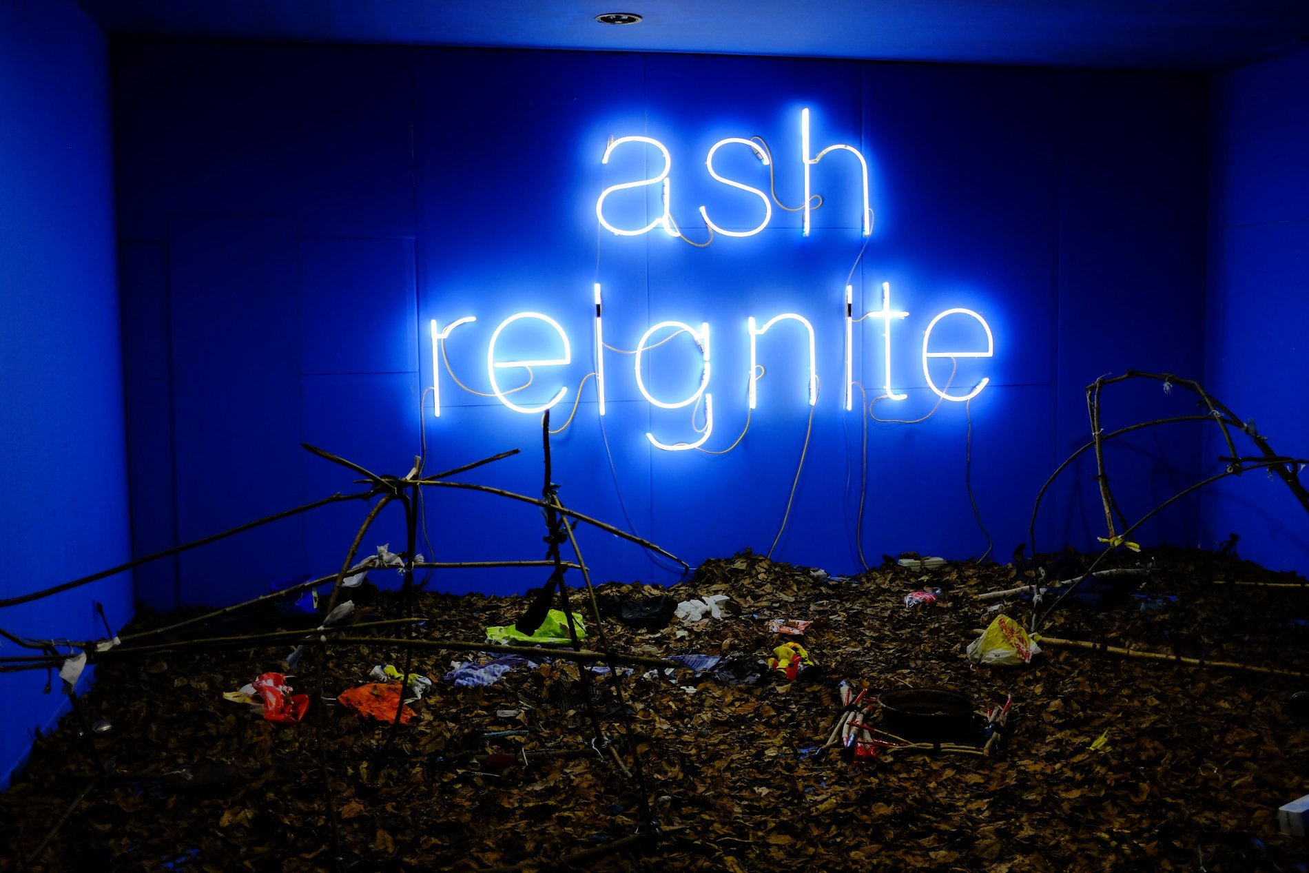 Ash Reignite